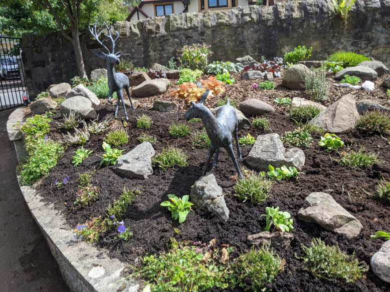 soft landscaping & planting design Edinburgh - a completed project.